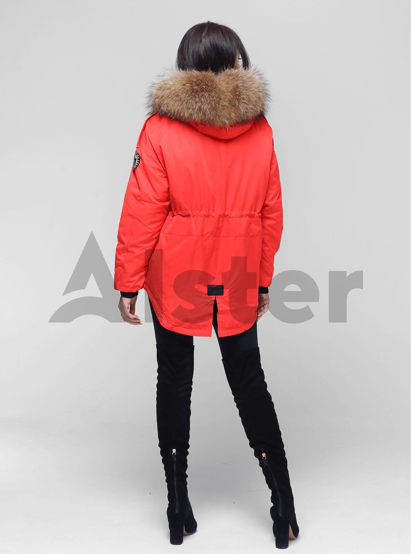 Зимова куртка-парка з хутром єнота Червоний XL (05-V191225): фото - Alster.ua