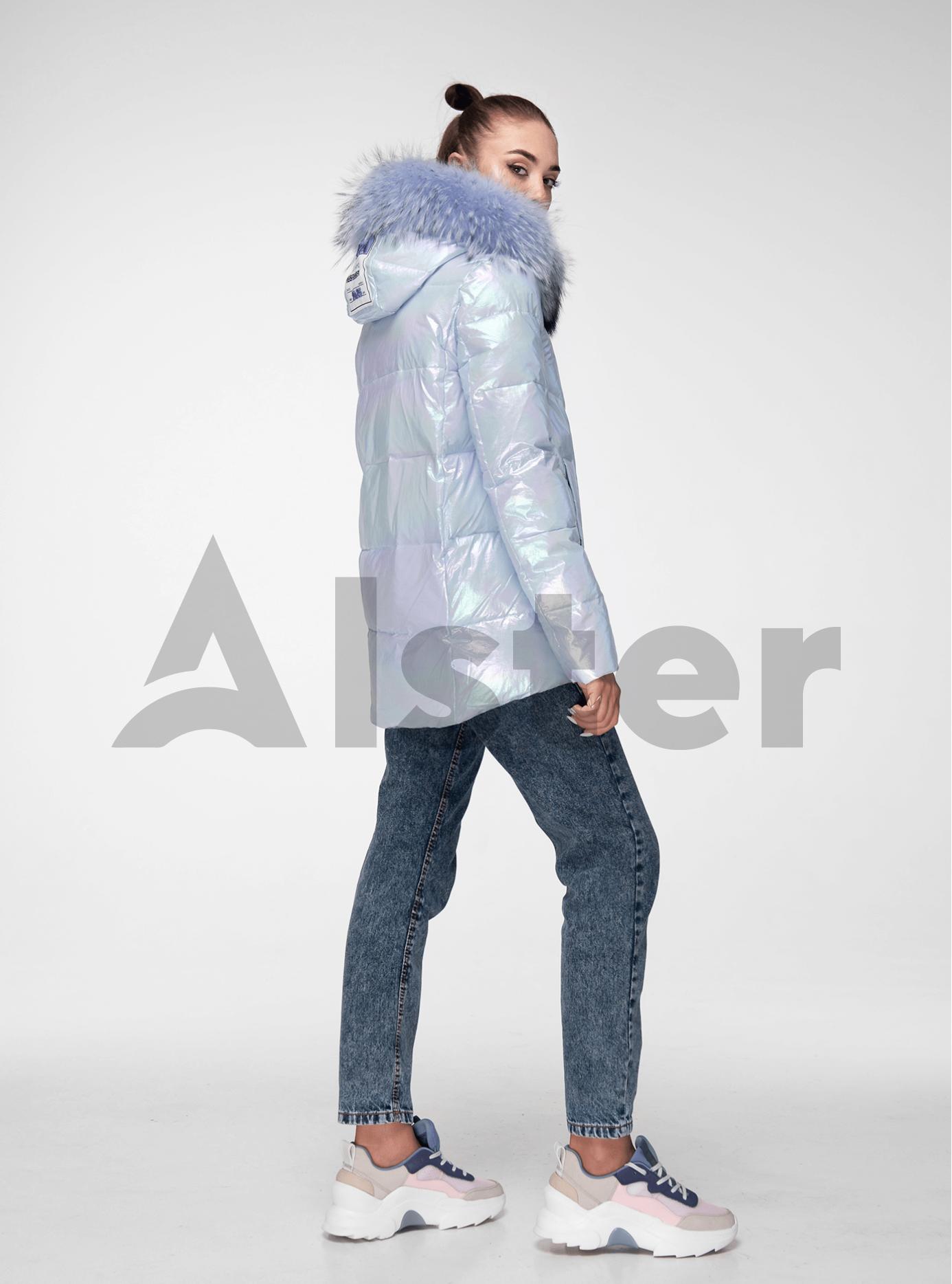 Куртка зимова перламутрова з хутром єнота Світло-блакитний S (05-ZL2017): фото - Alster.ua
